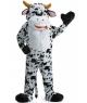 Mascota petrecere Vaca