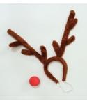 Set ren Rudolph
