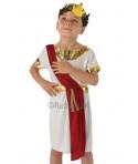 Costum carnaval baieti senator roman