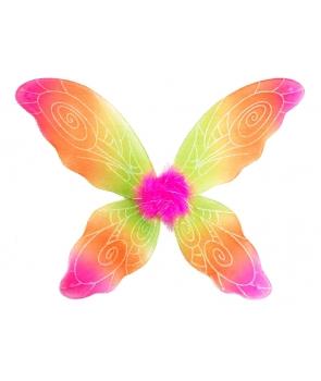 Aripi fluture multicolore