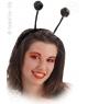 Antene negre insecte