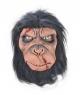 Masca halloween cimpanzeu zombie