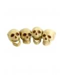Decor halloween craniu culoare naturala