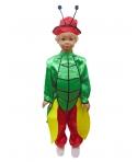 Costum carnaval copii Greiere