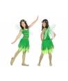 Costum carnaval Zana verde