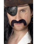 Mustata pirat