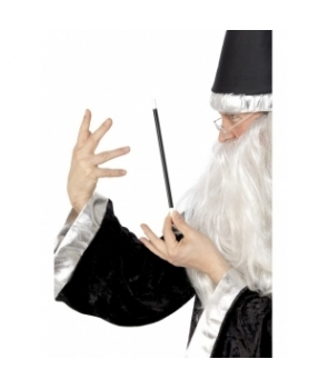 Bagheta magician