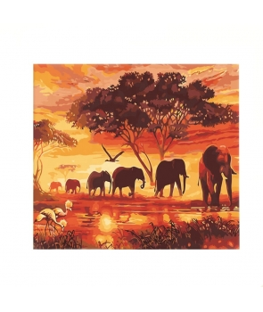 Set pictura pe numere Turma de elefanti