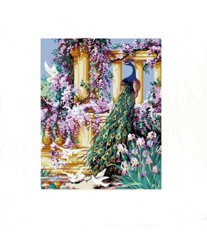 Set pictura pe numere Peisaj cu Paun multicolor