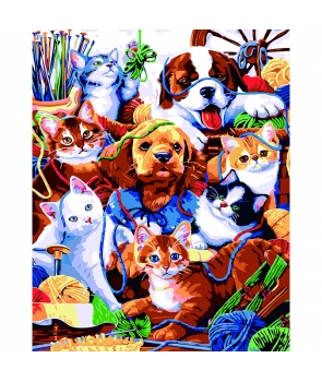 Set pictura pe numere Caini si pisici