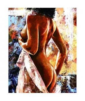Set pictura pe numere Misterul feminin