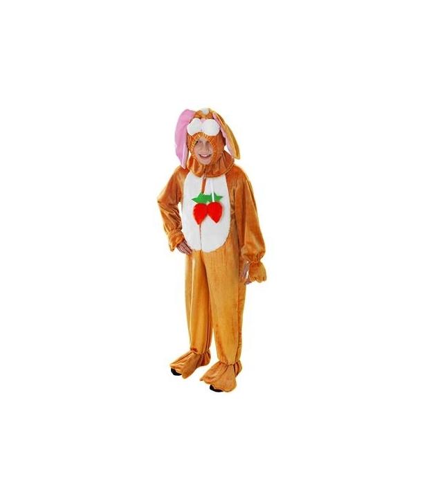 Costum carnaval copii Iepure maro